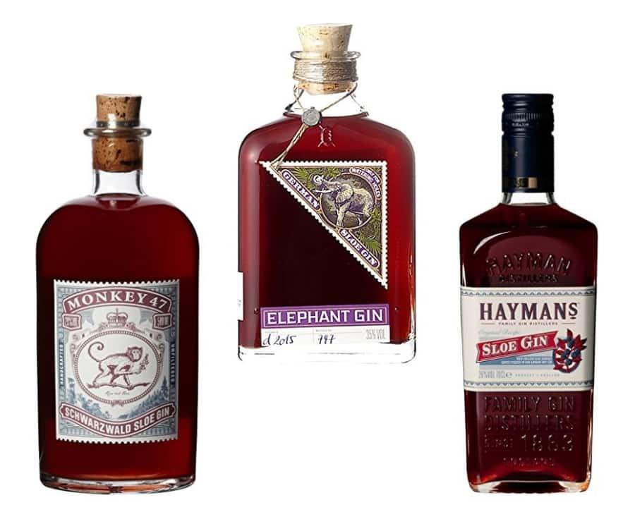 Beispiele für Sloe Gin: Monkey 47, Elephant & Hayman's Sloe Gin