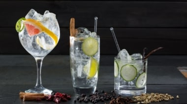 New Western Dry Gin als idealer Begleiter für ausgefallenere Gin & Tonics