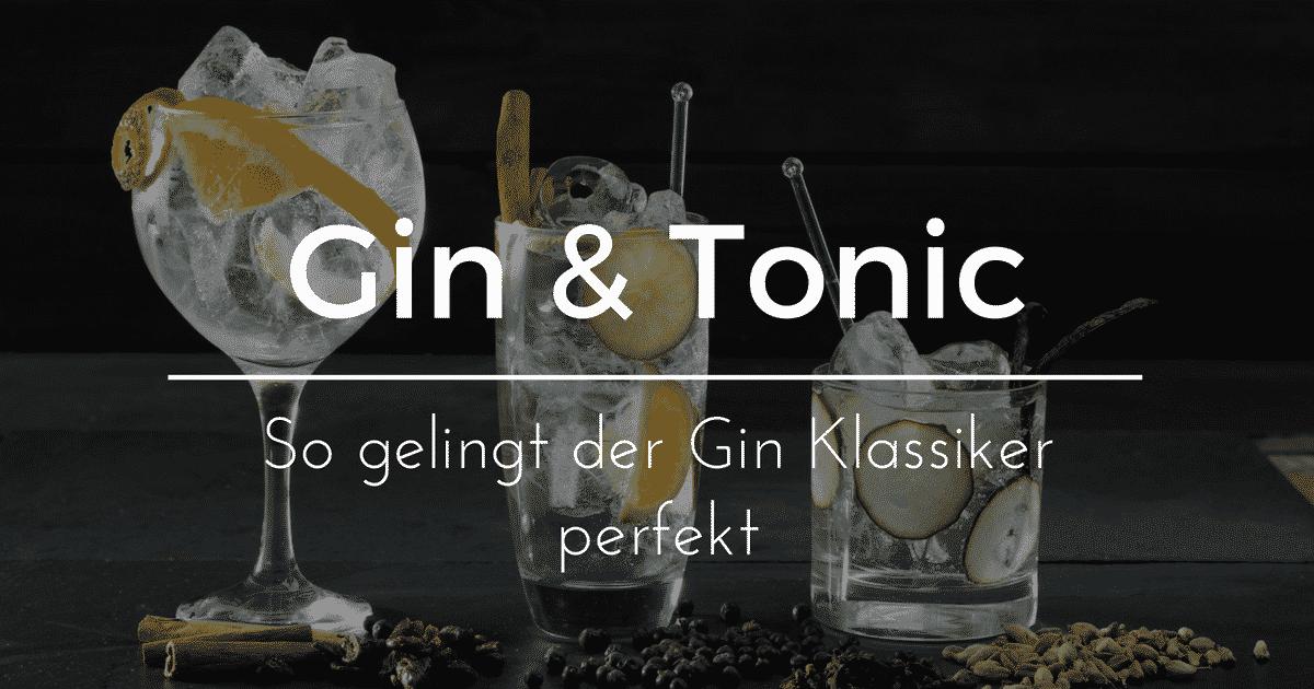 ᐅ Gin & Tonic Rezept, Zubereitung & passende Gins   Gintlemen.com