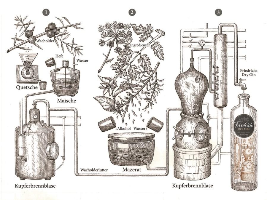 Herstellung des Friedrichs Gin