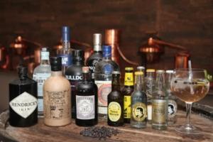 Gin und Tonic Auswahl bei einem Gin-Tasting von Miomente